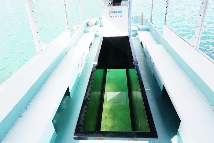 広々グラスボート