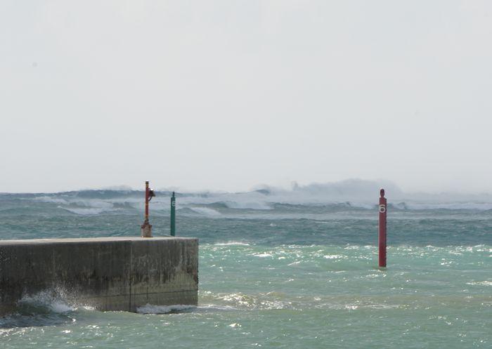 強いうねりが港のすぐそこに