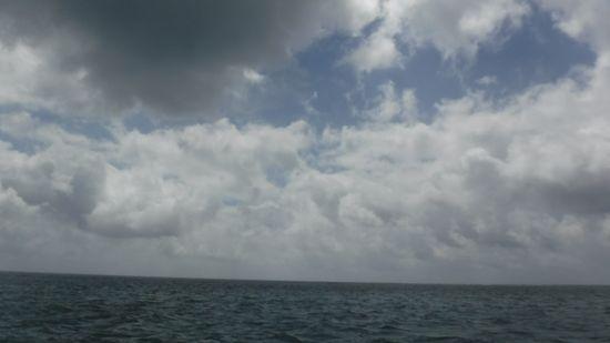 久々の曇り模様です。