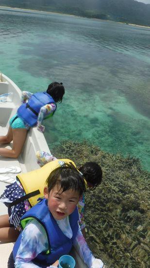 ボートの上からでもサンゴが丸見えです