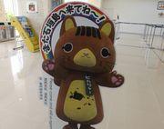 ぴかりゃーは竹富町のマスコットです。