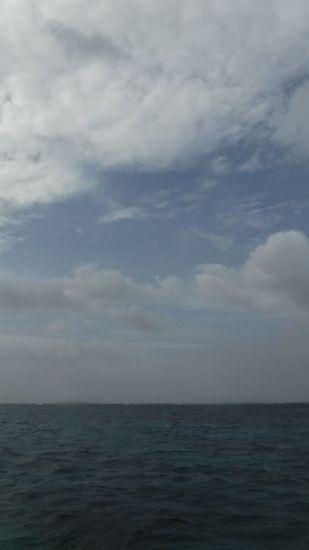 曇りの一日です。