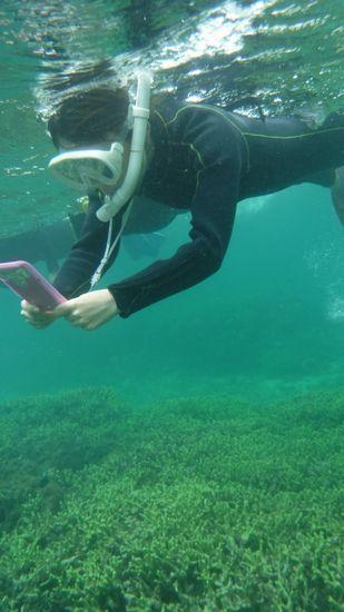 水中撮影にいそしむO江さんです。