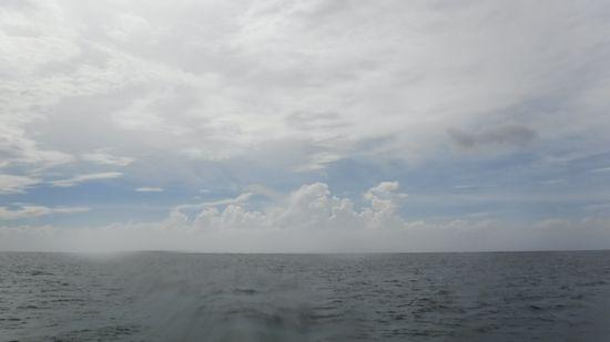 曇りの一日でしたが、遠くには、夏雲です。