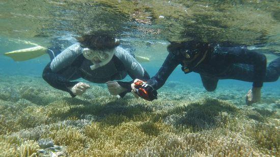浅い水深を楽しんでいます。
