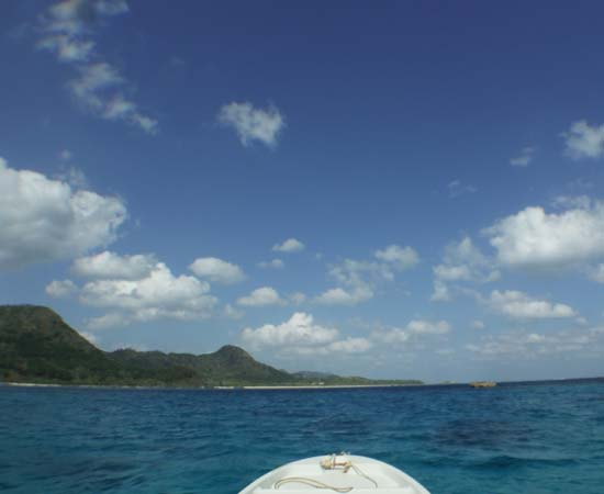今日もいい天気の石垣島です