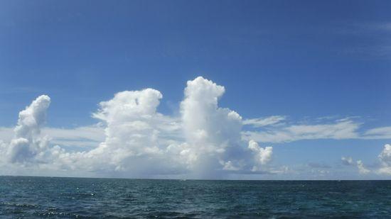 ズドンと夏雲の登場です。