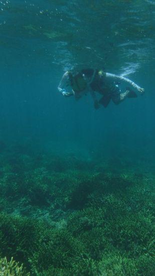 Hさん、W辺さんもすいすい泳ぎます。