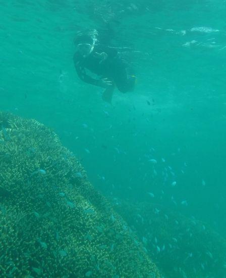 パワフルフィンキックで余裕の泳ぎです。