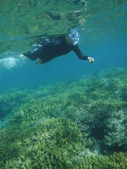 サクサク泳いで海を満喫です。