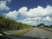 沖縄らしい風景です