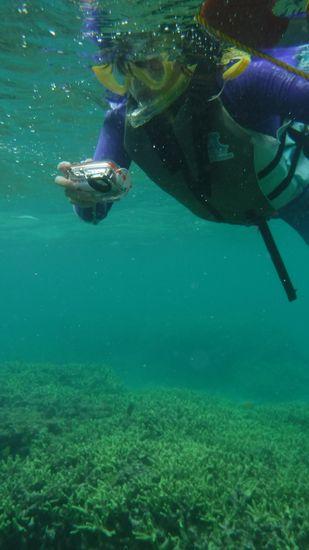お母さんは水中カメラで撮影です