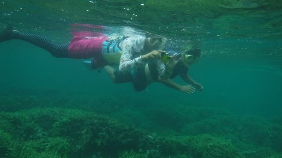 余裕の泳ぎのお父さんとお母さんです。
