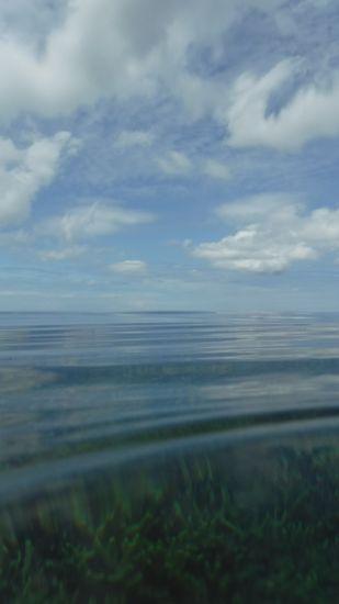 午後からは一段と穏やかな海です。