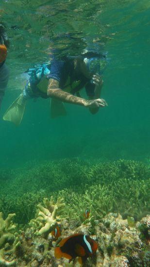 ジョウサブロウくんもすいすい泳いでいます。