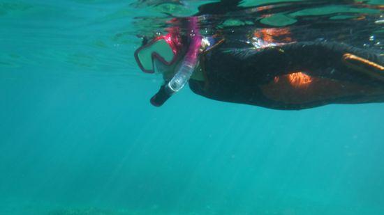 すいすい泳ぎリコちゃんです。