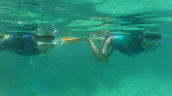すいすい泳ぐお二人です