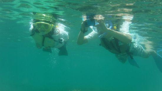 お父さんもお母さんも楽勝の泳ぎです