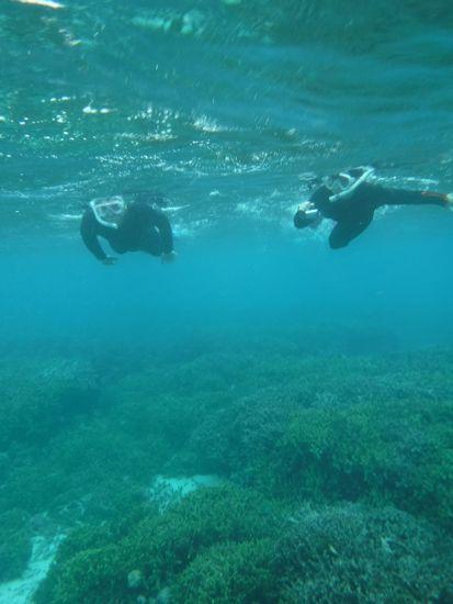 この時期、水中の透明度は、抜群です。