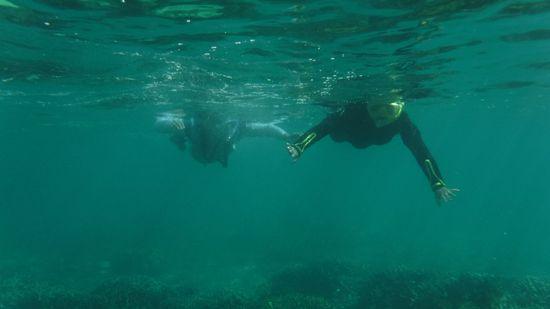 お父さん、お母さんも問題のない泳ぎです。