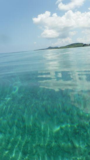 穏やか過ぎる水面です。