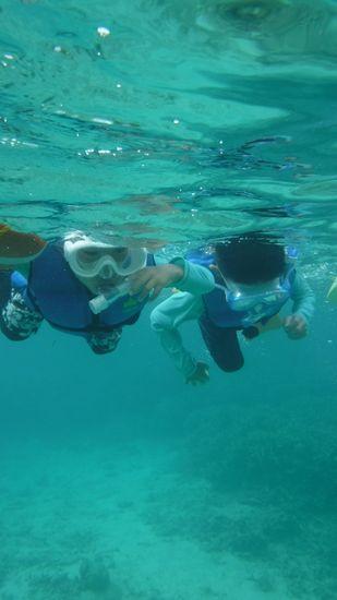 すいすい泳ぐハルキ君とソウタ君です。