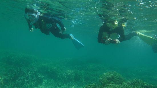 水中カメラで撮影に没頭のお母さんです。