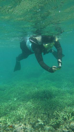 お母さんは、水中カメラで撮影に没頭です。