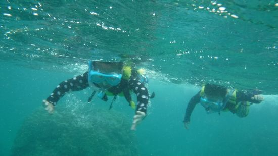 最後の最後には、二人で競争しながら泳いでいます!