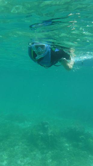 最後には、ヒゲン君、すいすい泳いでいます♪