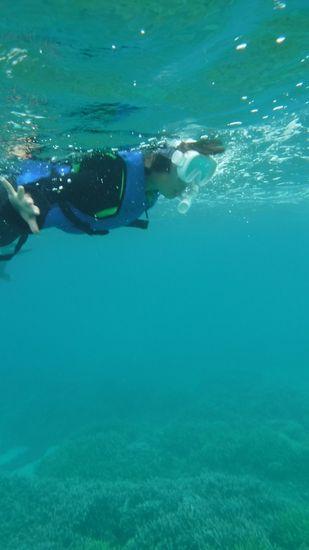 ハルちゃん。慣れてくると一人で泳ぎます。