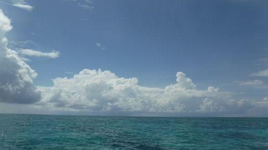 今日は快晴時々曇りのお天気です。