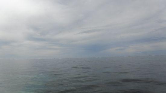 薄雲が空を覆っています。