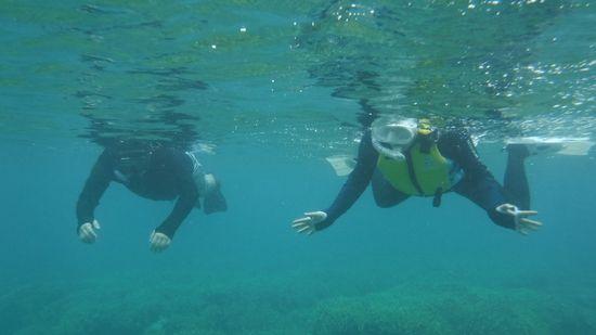 水中を楽しんでいます。
