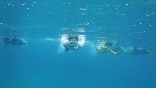 エントリーとともに泳ぎ始める皆さんです。