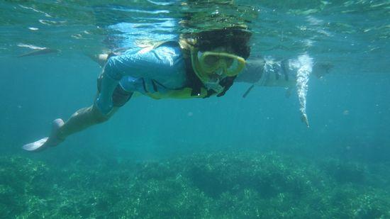 すいすい泳ぐお姉さん。