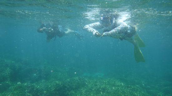 海を満喫のお父さんとお母さんです。