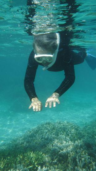 71歳とは思えない泳ぎっぷりです。