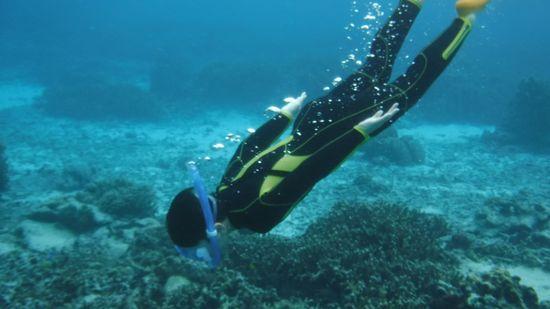 サンゴにむかって素潜りドボンです