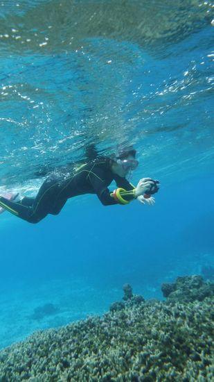 水中撮影にいそしむK原さんです