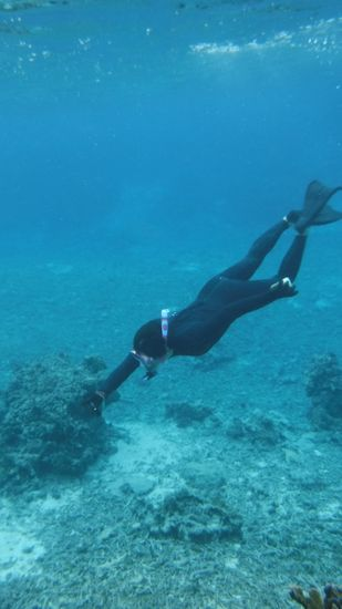 貝殻拾いに水中撮影♪