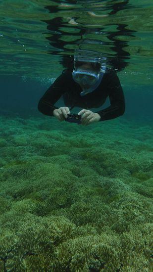 お父さんは、水中カメラで撮影♪