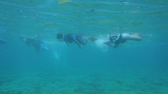 二本目もガンガン泳ぎまわって楽しみました