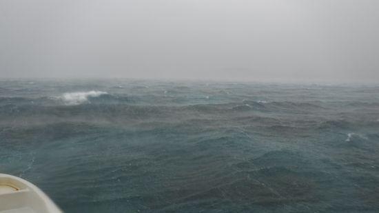 超大雨です!