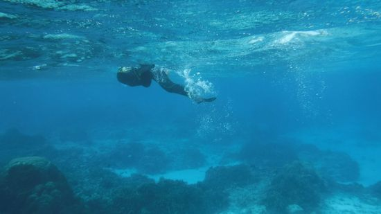 笹川を追い抜いて、すーいすい泳いでいます♪