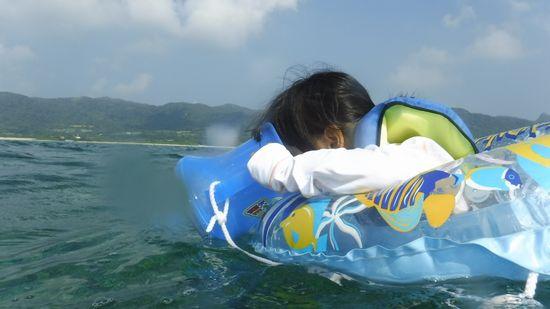 ナナちゃん、お魚さん探しに没頭です。