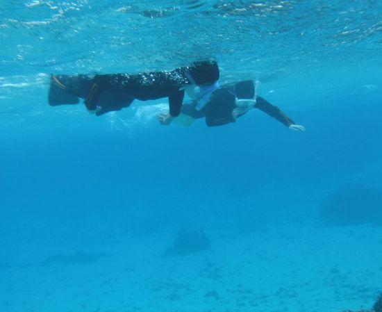すいすい泳ぐHさん親子です