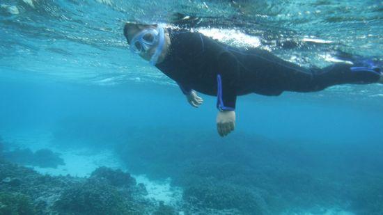すいすい泳ぐ旦那さんです。