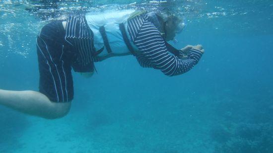 水中撮影に没頭のお父さんです
