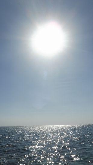 雲一つない空に太陽がぎらぎらしています